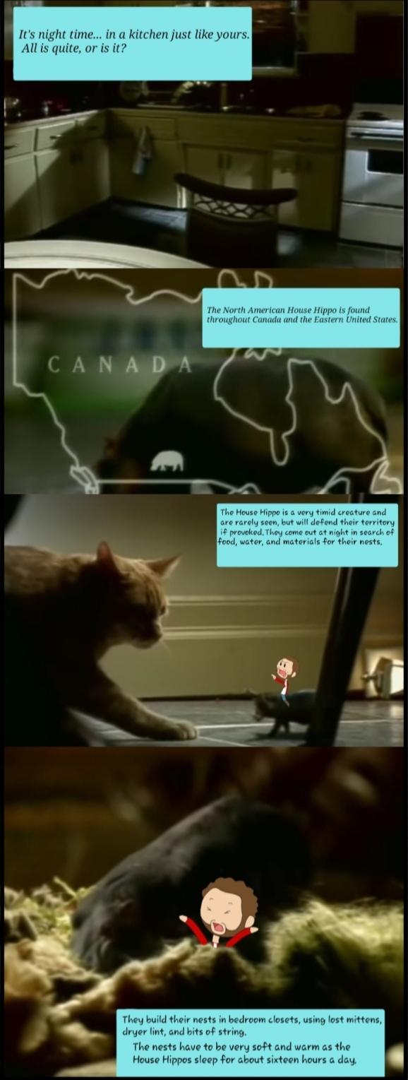 Urban Canada 3